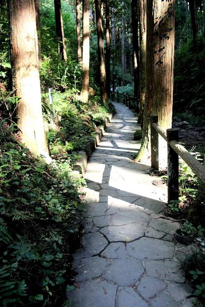 宿谷の滝への道2