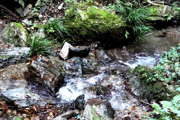 宿谷の滝の沢の流れ4
