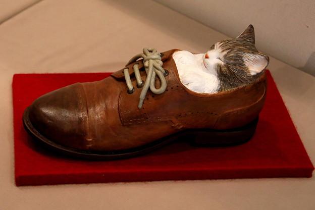 靴の中居眠りの猫  展示作品