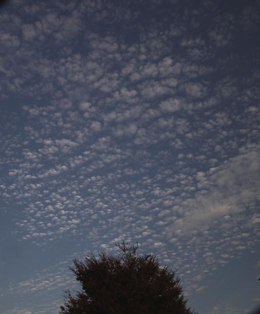 秋の青空4