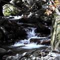 Photos: 徳和渓谷の沢の流れ風景