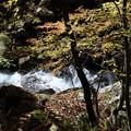 Photos: 紅葉と渓流の風景 徳和渓谷