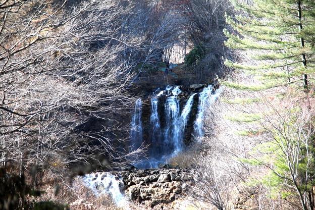 チャツボミゴケ公園滝風景