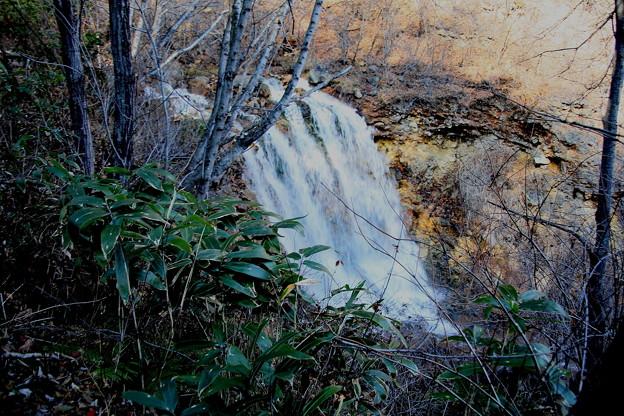 チャツボミゴケ公園の秋の滝