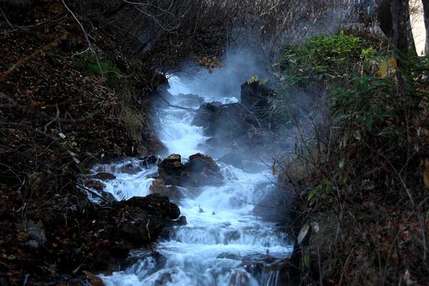 湯けむり立つチャツボミゴケの渓流