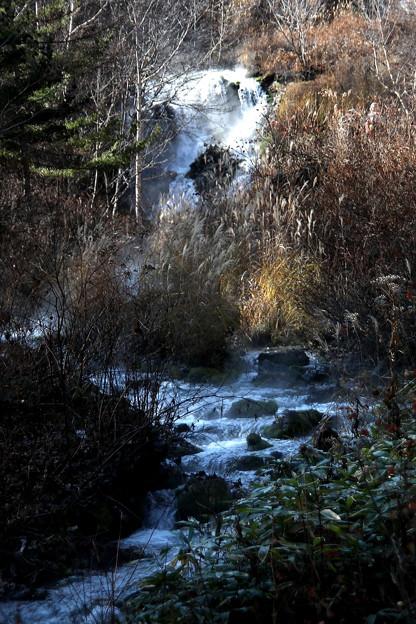 チャツボミゴケ公園の沢と滝風景