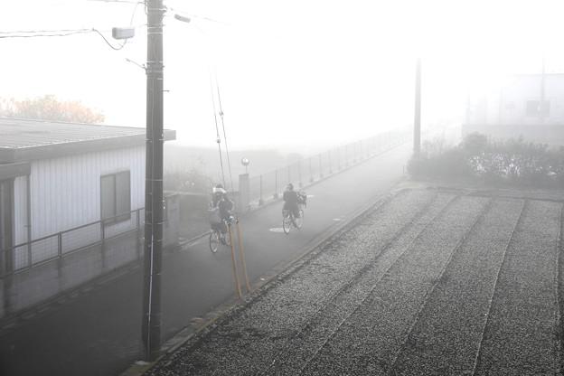濃霧の朝通学風景