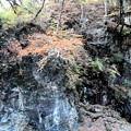 秋の甌穴群の崖風景