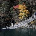 Photos: 近くからの夢の吊橋 寸又峡