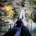 Photos: 夢の吊り橋 寸又峡(人数制限10人)