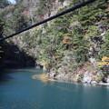 Photos: 夢の吊橋 途中右側の紅葉