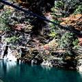 夢の吊橋 途中左側の紅葉