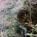 寸又峡の紅葉 崖