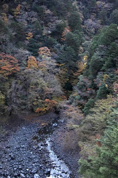 飛龍橋よりの寸又峡の紅葉風景