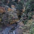 Photos: 飛龍橋よりの寸又峡の紅葉風景