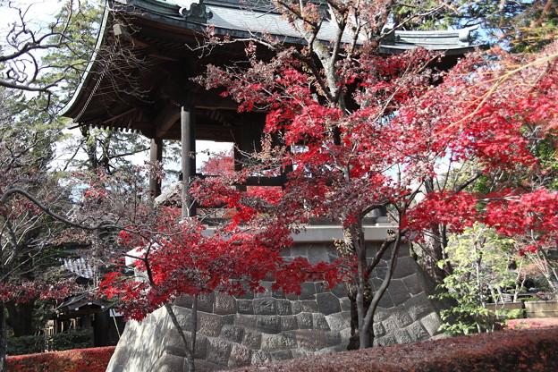 鐘楼の紅葉 平林寺