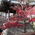Photos: 鐘楼の紅葉 平林寺