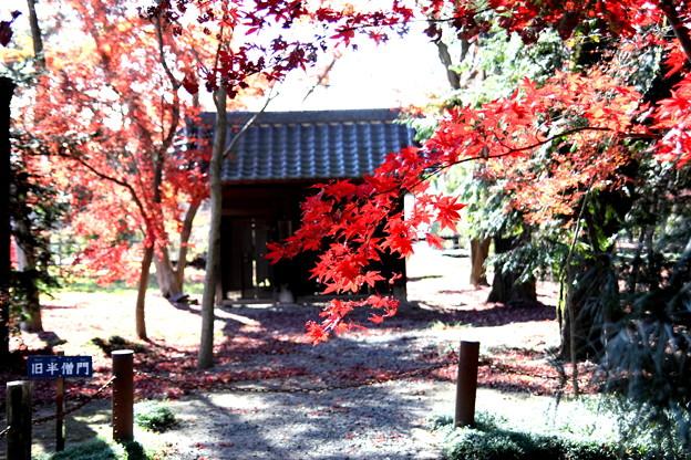 旧半僧門の紅葉風景