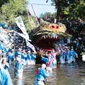 Photos: 雷電池への蛇神輿の入水