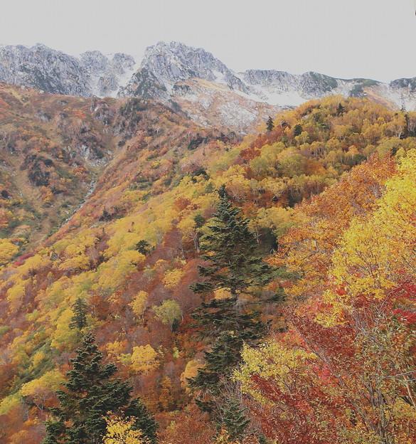 大観峰よりの紅葉風景