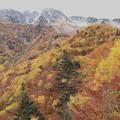 Photos: 大観峰よりの紅葉風景