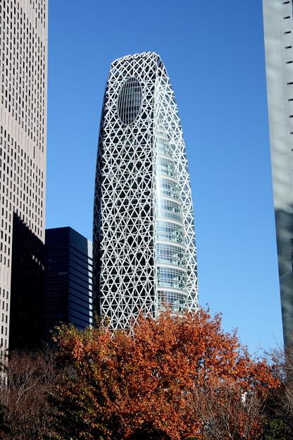 Photos: 東京モード学園