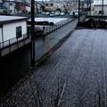 初積雪(2021.1.28)