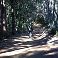 Photos: 天覧山・多峯主山ハイキング4