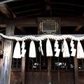 Photos: 諏訪八幡神社