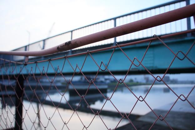 新橋建設5 金網