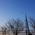 写真: 塔と月と