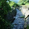 写真: 谷川