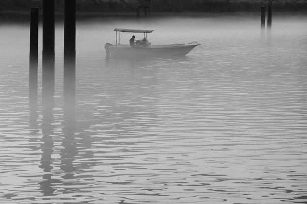 写真: 朝漁