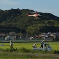 Photos: 軽トラ