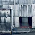 写真: 白の時代