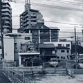 Photos: 解体