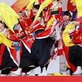 Photos: ふくこい13-イエローフラッグ