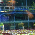福岡15-モネの橋