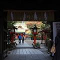 写真: 福岡18-神社