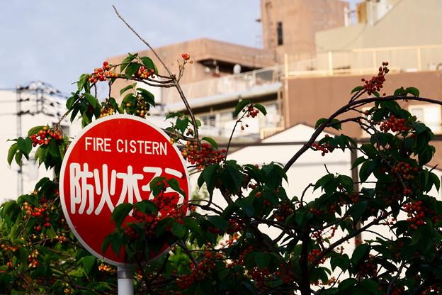 防火水木金土日