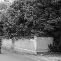 Photos: 土塀