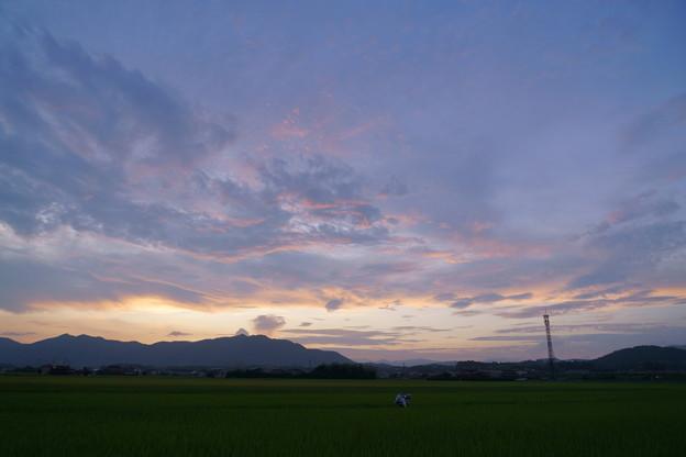 Photos: 暮色