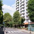 Photos: くすのきアパート