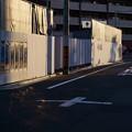 Photos: 光の影