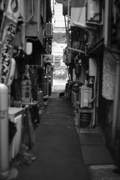 大須賀 隘路
