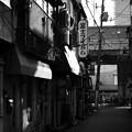 Photos: 朝日射す刻