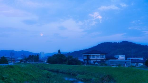 お月見散歩