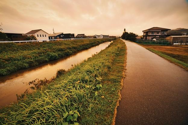 Photos: 水の道、雨の道