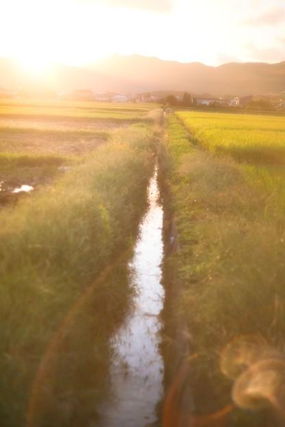 Photos: お気に入りの用水路