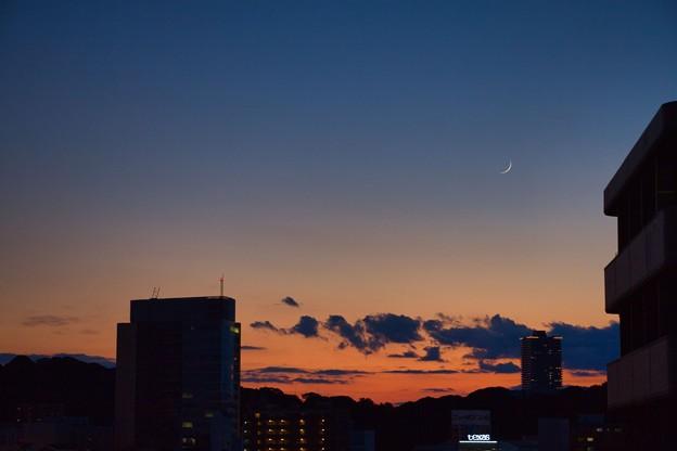 Photos: テキサスの夕月